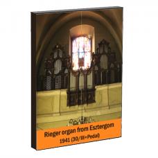 Rieger Organ of Franciscus Church